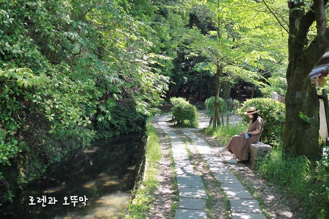 산책하기 좋은 교토 '철학의 길'(난젠지에서 가는 경로)10