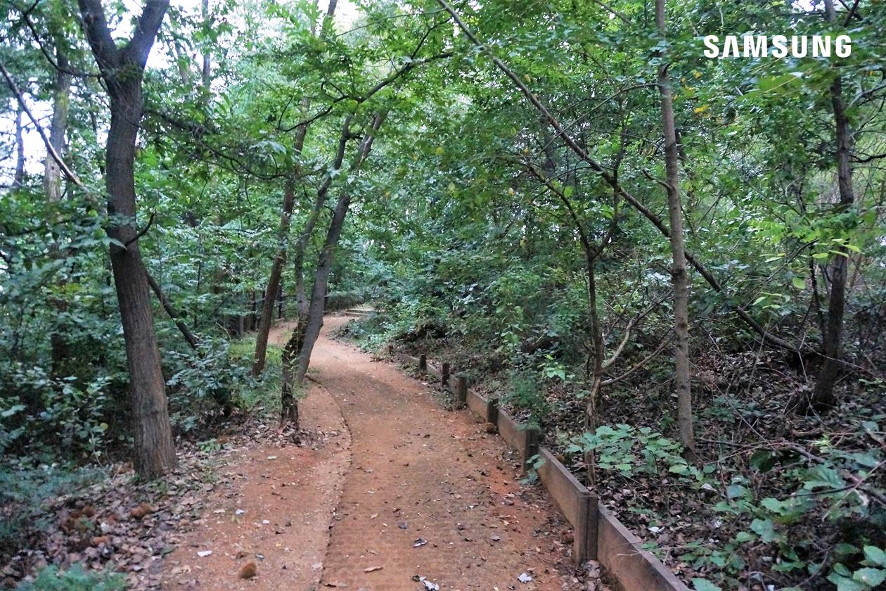 용인 산책 코스, 생태마당 근린공원