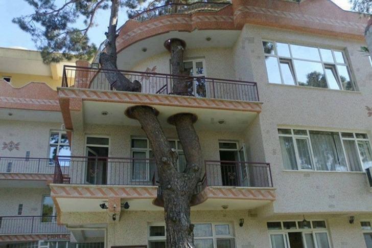 자연을 존중하는 사람들의 건축 방법
