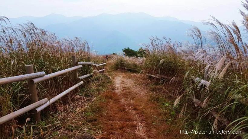 가을 민둥산 풍경