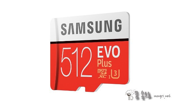 Samsung MicroSDXC EVO PLUS 512GB MB-MC512GA/KR