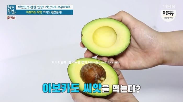 천기누설 씨앗 섭취 지침서