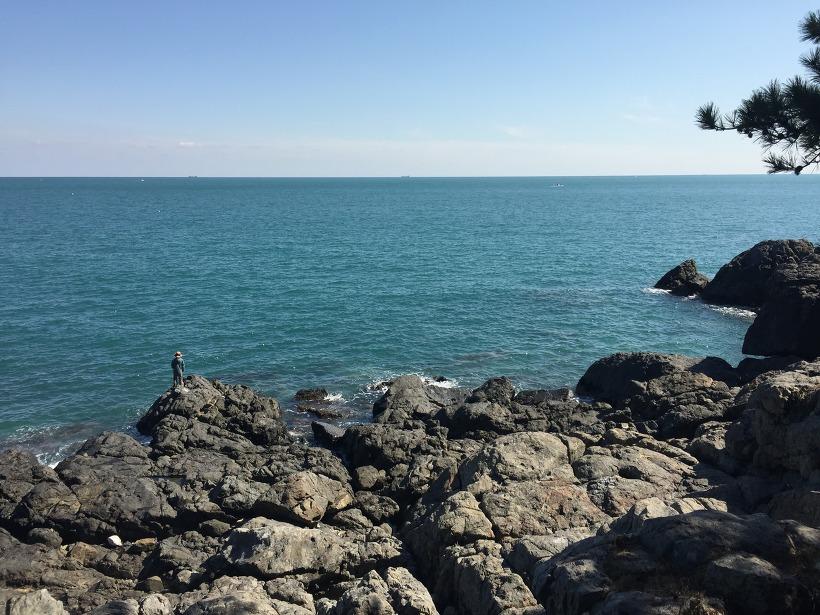 동백섬 바다 풍경