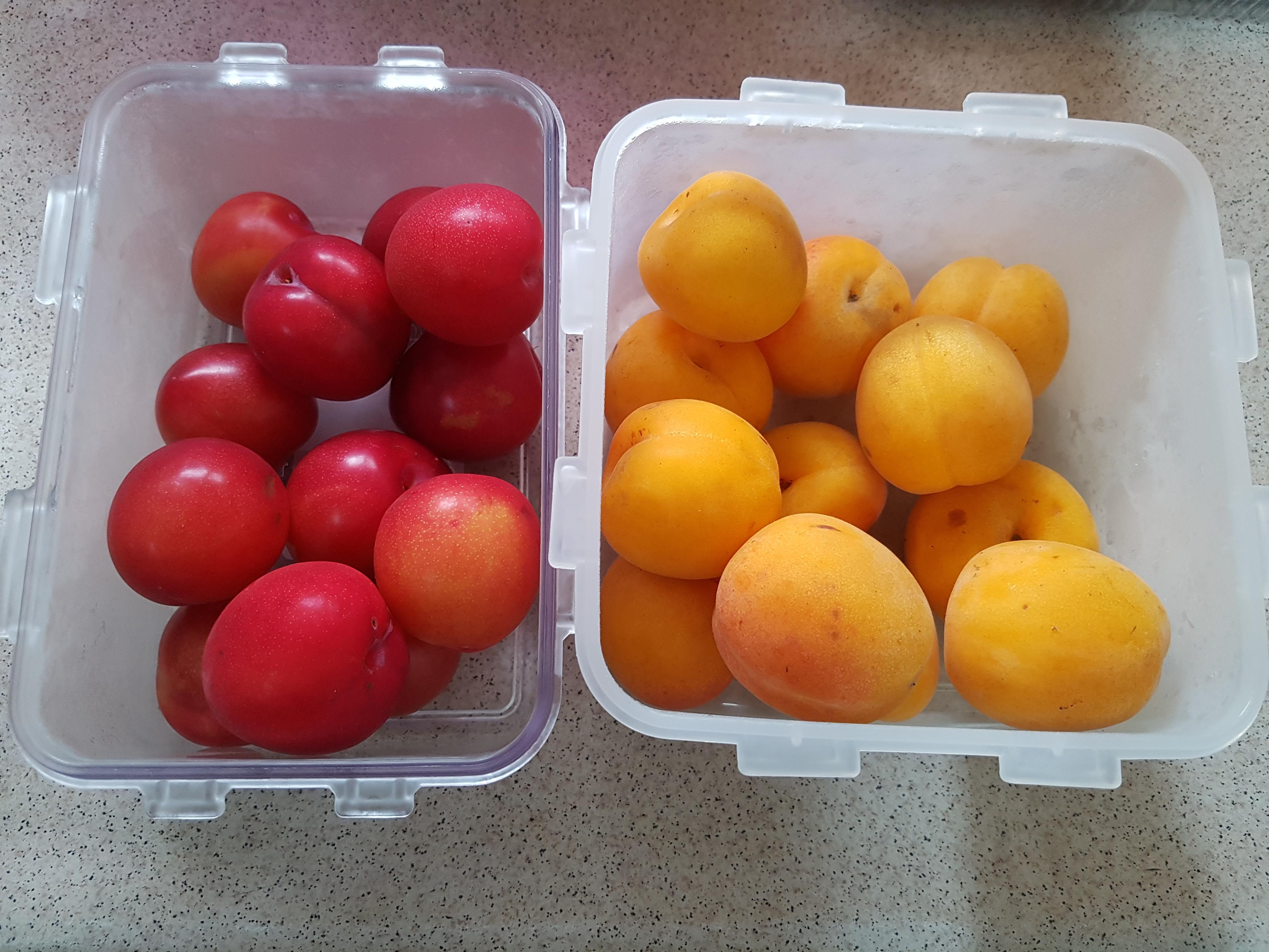 선물, 여주에서 올라온 과일과 야채