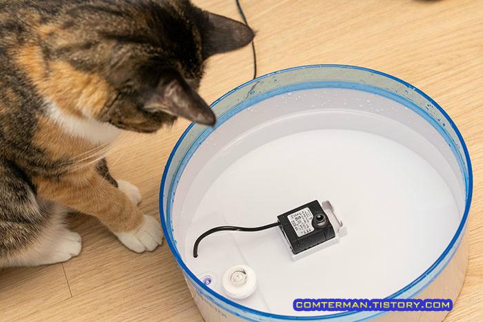 고양이 급수기 물때 청소