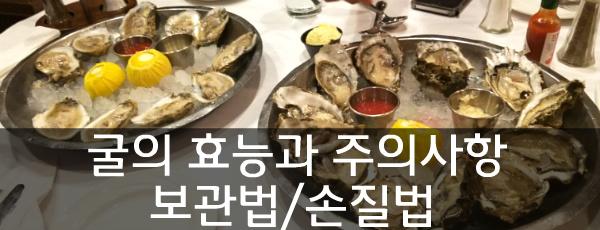 굴의 효능과 주의사항 [석화 보관법/손질법/섭취방법/ 건강정보] 석화 oyster 굴 철 천연강장제 천연정력제