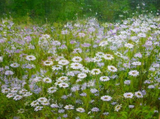 김경중 시인의 아름다운 시 200선(110) - 들꽃은 왜 키가 작은가