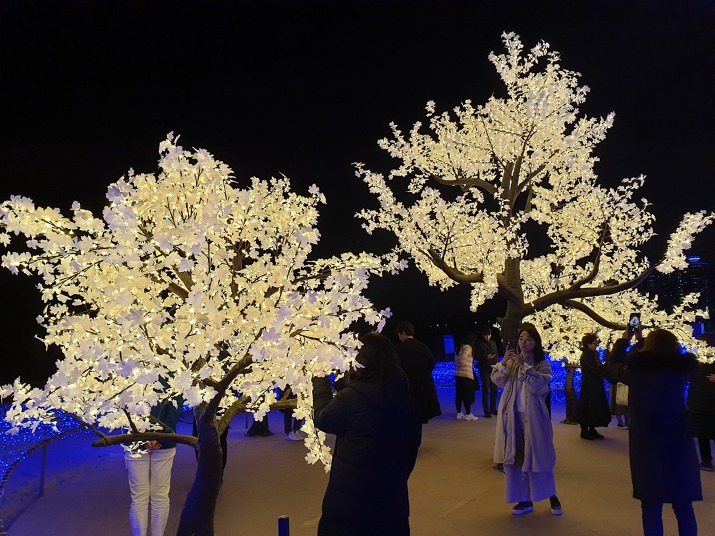LED조명 벚꽃나무