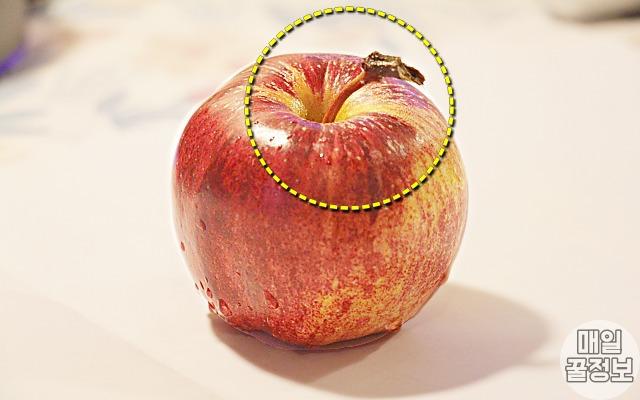 꼭지, 사과농부가 알려준 아삭아삭 '맛있는 꿀사과 고르는 법' 5