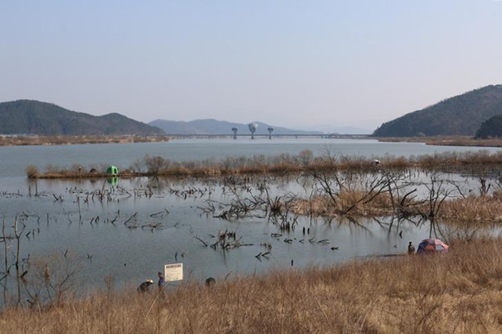 낙동강 구미보 독동수로 포인트