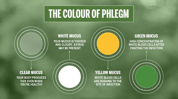 phlegm color
