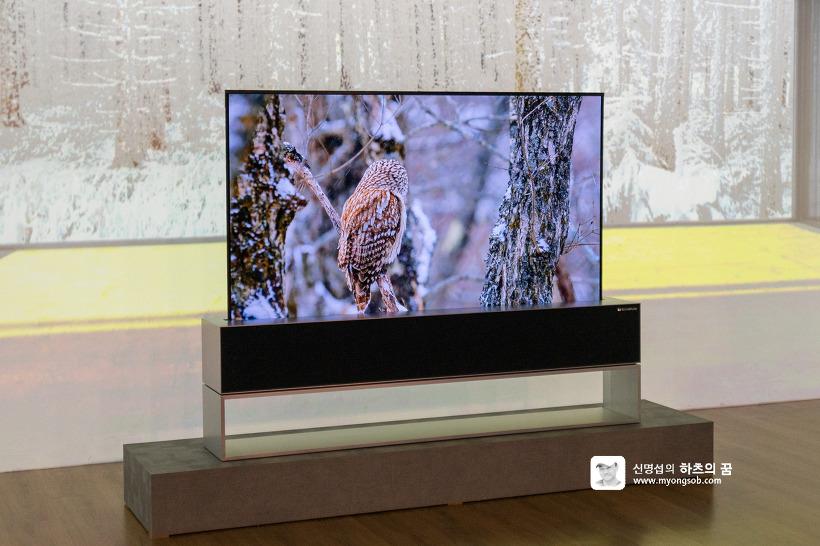 LG 롤러블 올레드 TV R