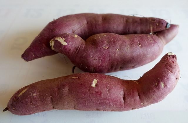 지금 당장 냉장고에서 꺼내야 할 음식 [살림노하우] 감자와 고구마