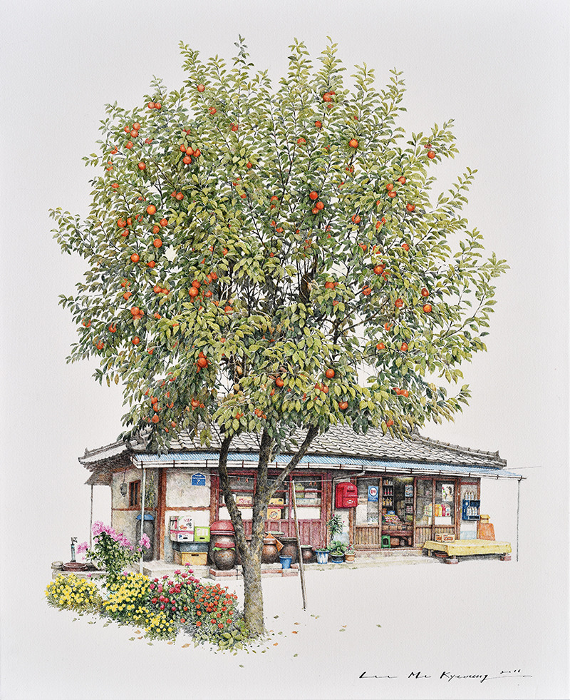 감나무집가게