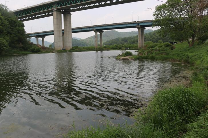 남한강 붕어낚시 포인트 - 충주 두무소
