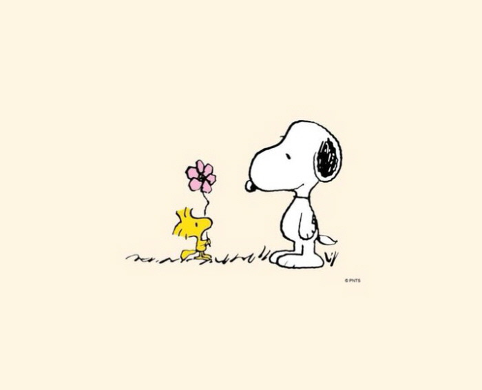 24. snoopy-wallpaper