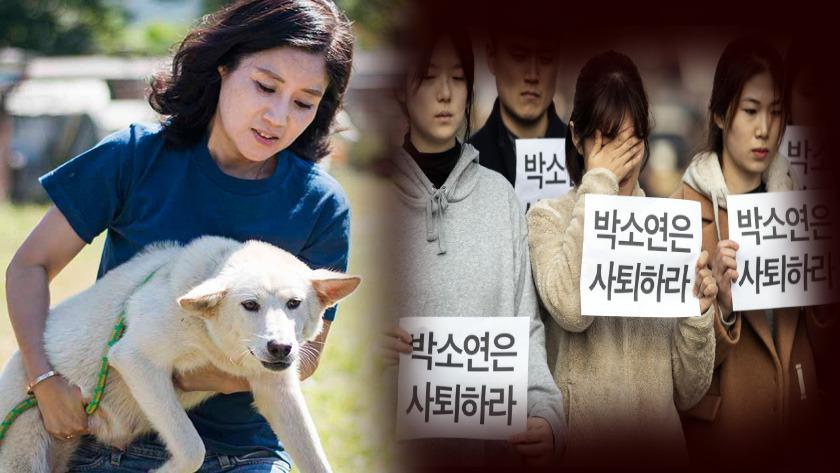 '안락사 논란 박소연' 동물 구조 여왕의 몰락
