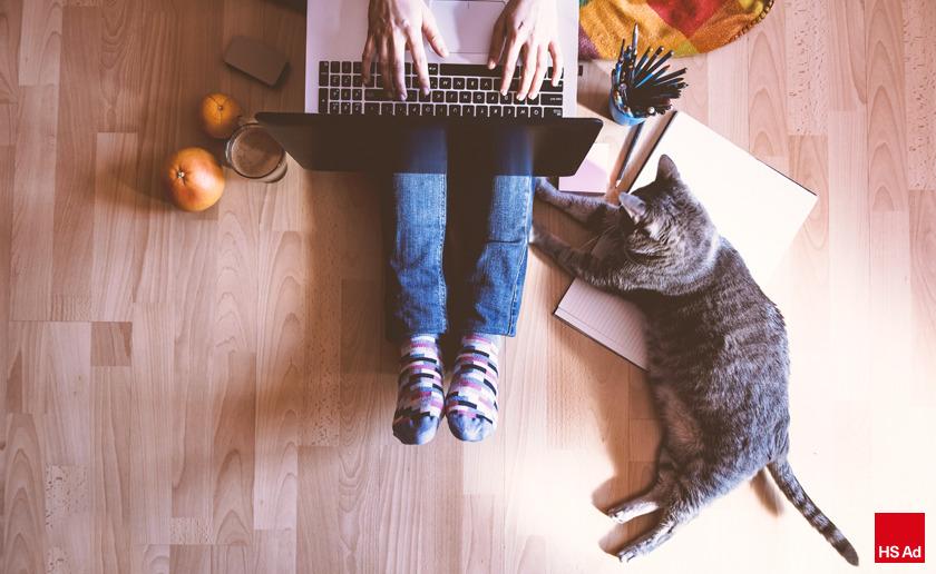 라이프스타일을 선도하는 반려동물 마케팅 시장! 반려견, 반려묘 커뮤니티 창조사업