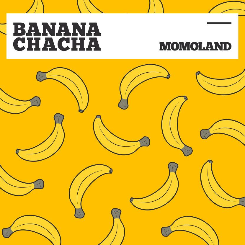 모모랜드 바나나차차