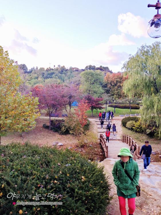 상암 월드컵 공원 단풍 가을나들이 7