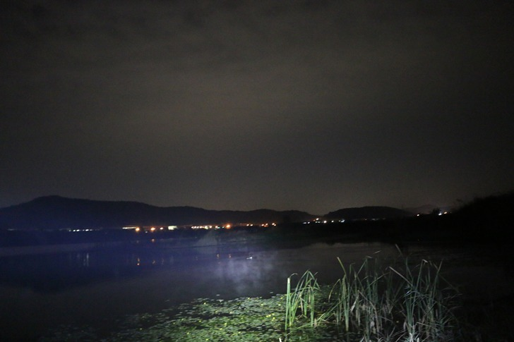 [민물대낚] 2020년 30차 : 밤낚시의 불청객 낙동강 칠곡권 붕어낚시