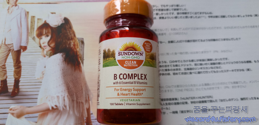 Sundown Naturals 복합 비타민 B(Sundown Naturals B Complex 100 Tablets)