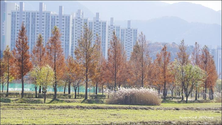 화명생태공원 과 화명지구