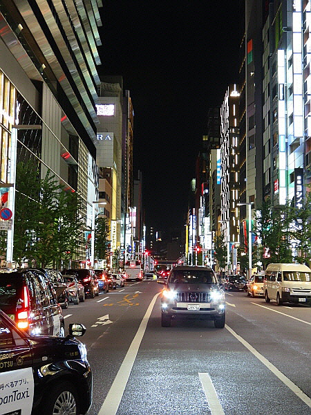 Trip in Ginza, Tokyo