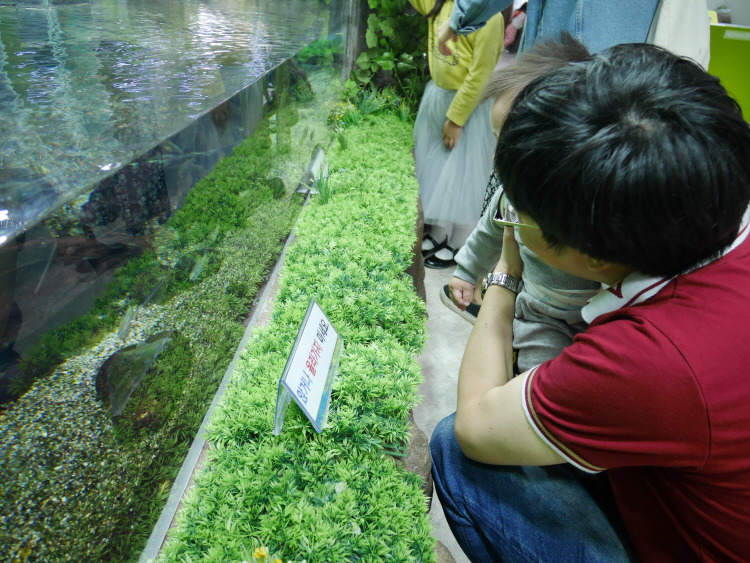진해해양공원 어류생태학습관 민물 수족관