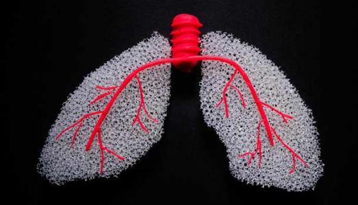 폐암 자가진단 방법