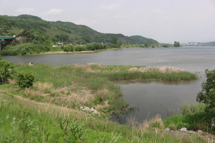 요도천 붕어낚시 포인트 - 충주 하검단교