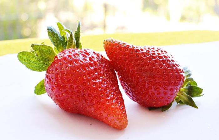 사진: 프레지어의 딸기 유래는 우니나라에 들어와서 설향, 매향이라는 명품이 탄생하였다. 과거에는 육보, 장희가 90%를 차지했었다. [우리나라 딸기의 전래]