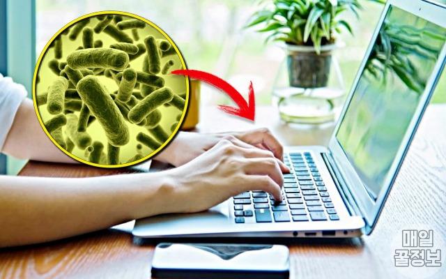 노트북 키보드, 세균, 집안 청소할때 대부분 '빼먹고 안하는' 장소 7