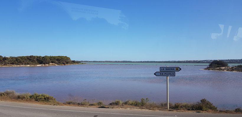 포르멘테라 섬 핑크 염전