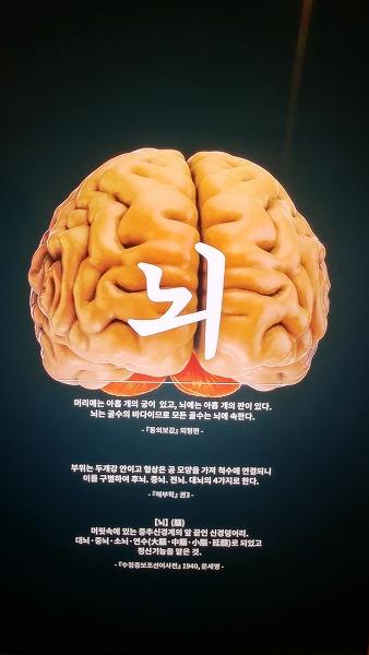 국립한글박물관_19