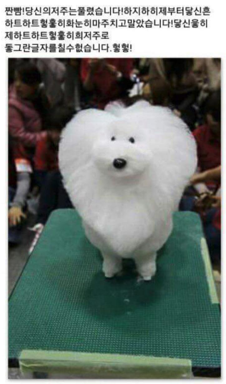 하트 강아지