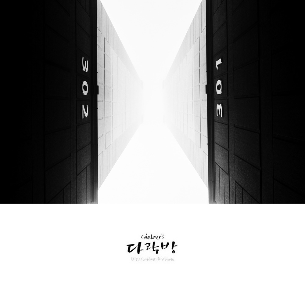 아침산책 - in the mist