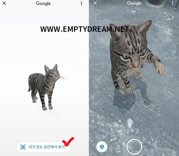 구글 앱에서 실물 크기 동물을 3D, AR로 볼 수 있다