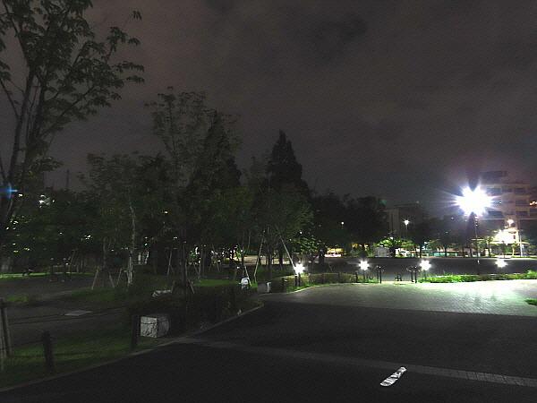 일본 도쿄 스미다공원