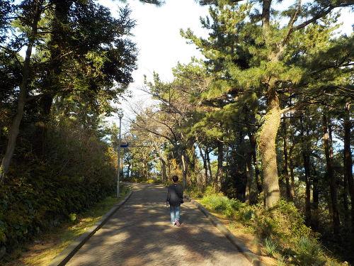 제주시 가까운 오름 사라봉 사라봉공원