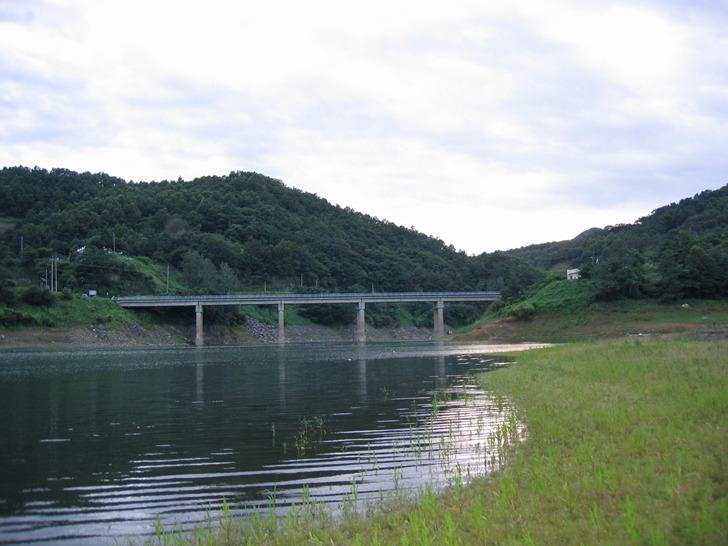 대청댐 붕어낚시 포인트 - 회남권 거신교