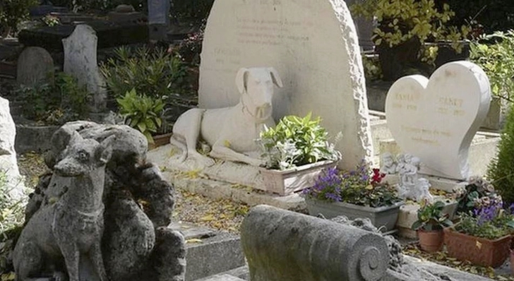 반려동물 장례식장