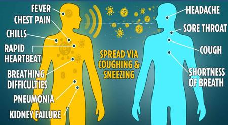 corona virus sneezing