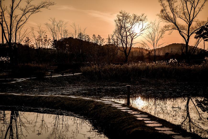 서천 국립 생태원