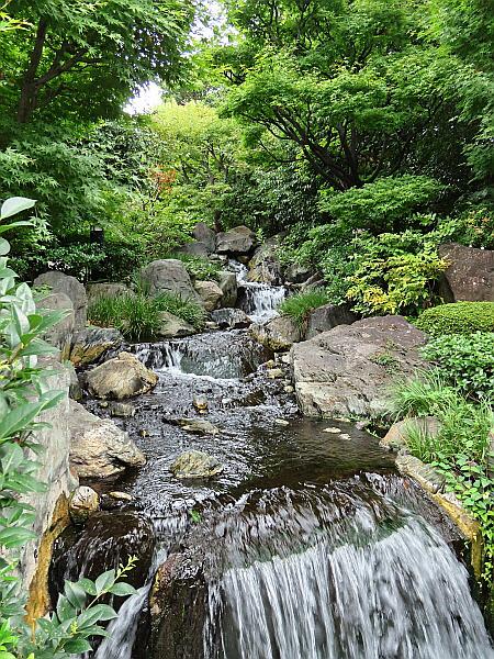 일본 도쿄 힐링 여행