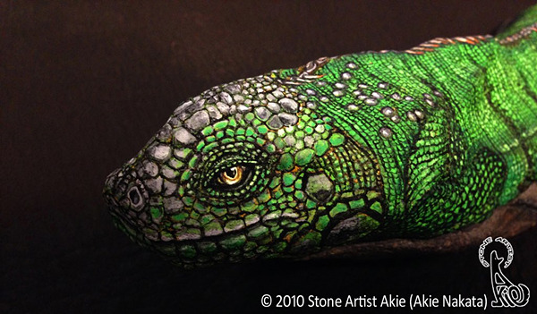 Stone Artist Akie (Akie Nakata)