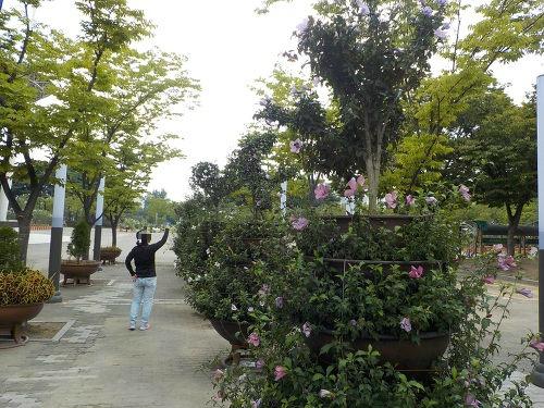 수원 근교 갈만한곳 만석공원