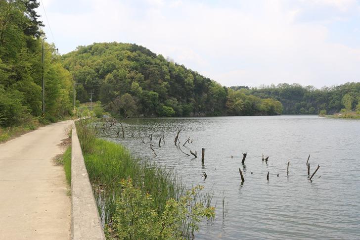낙단보 붕어낚시 포인트 - 우물리, 위천강 최하류