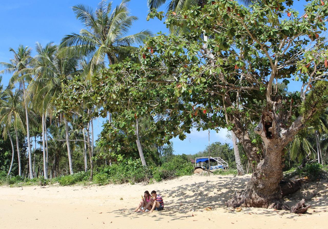 태국 끄라비(Krabi) - 클롱 무앙 & 텁캑 해변