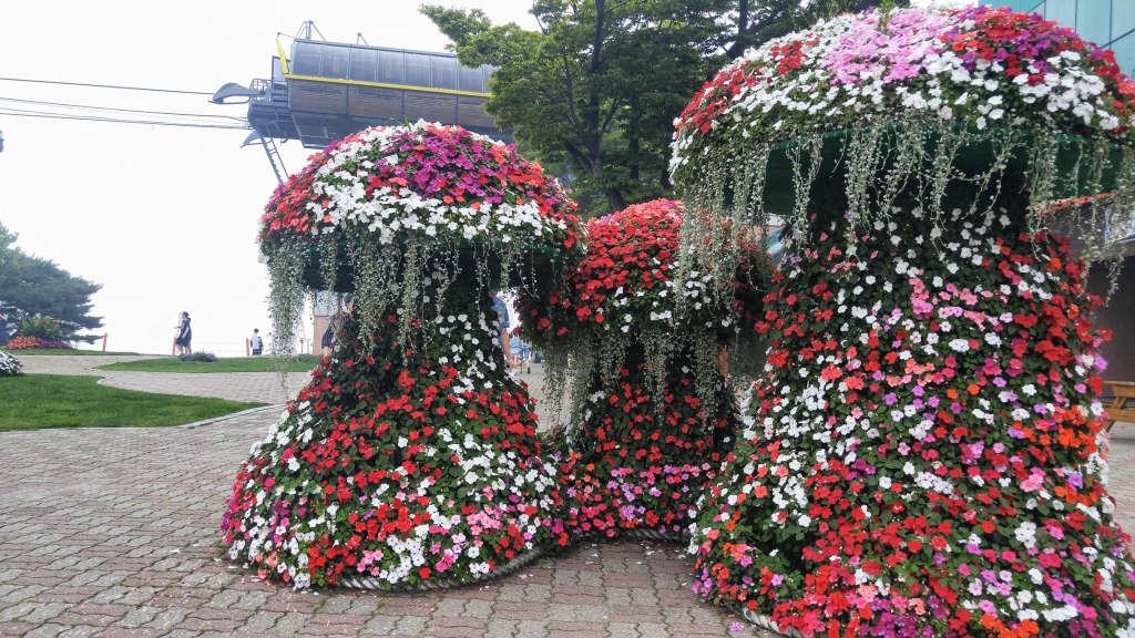중앙 꽃나무